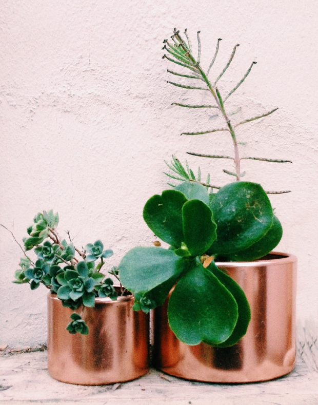 copper-planter-by-justina-blakeney3