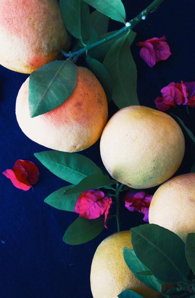 citrus-justinablakeney3