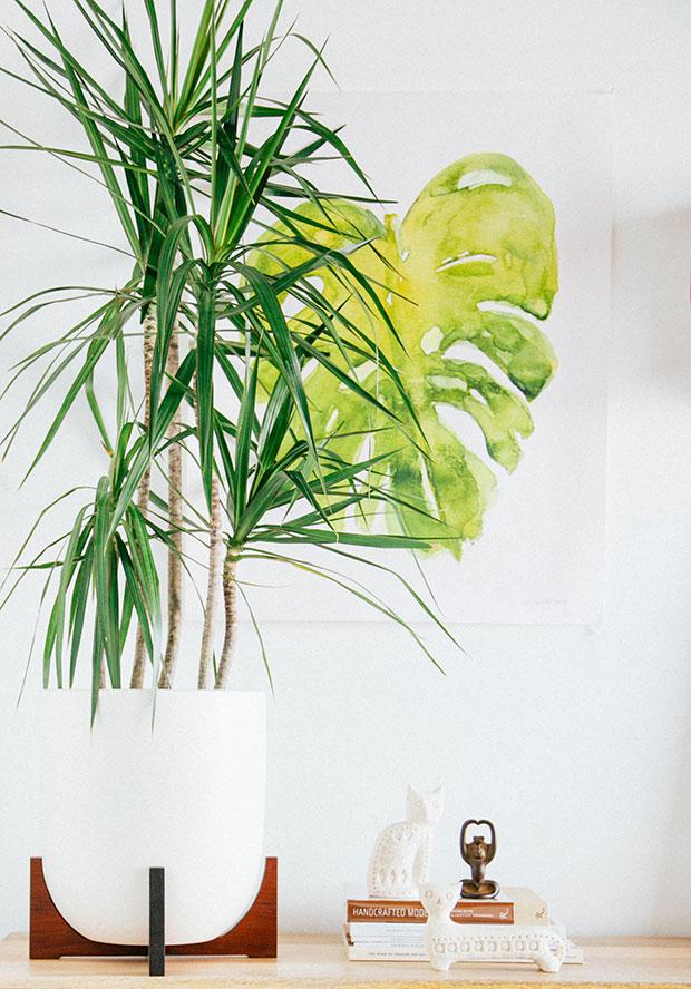 Modernist Planter Giveaway with Modernica | Justina Blakeney est. 1979