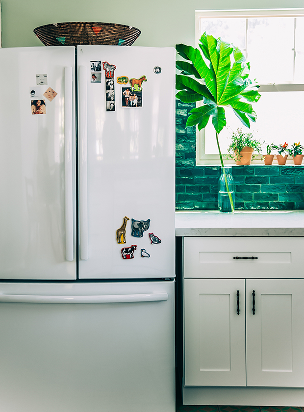 GE Energy Star French Door Refrigerator | The Jungalow