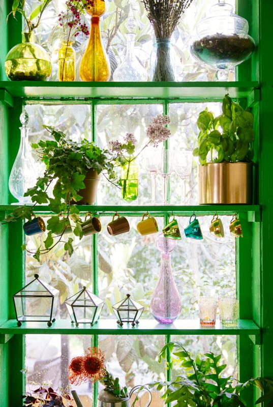 Garden Window / The Jungalow