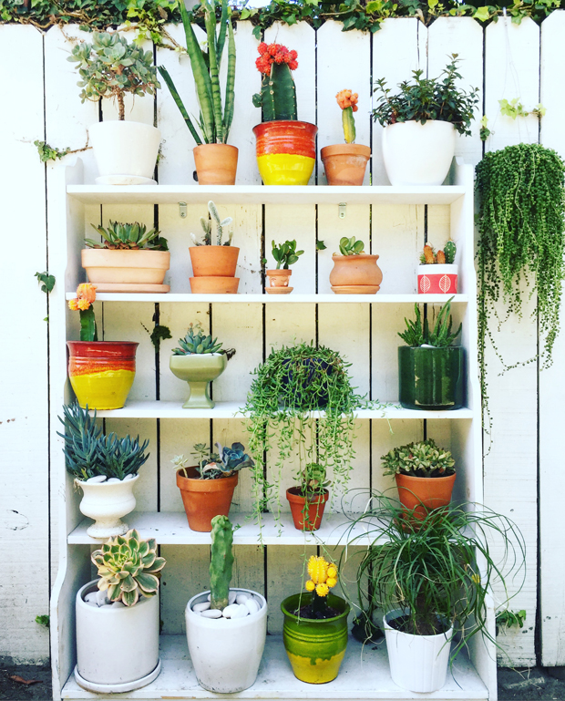 Bookshelf-Planter-Justinas