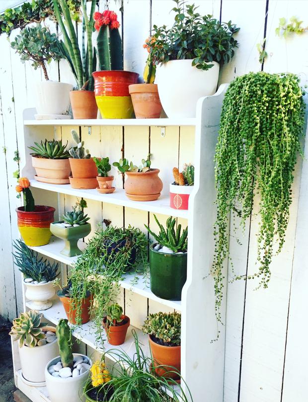 Bookshelf-Planter-Side