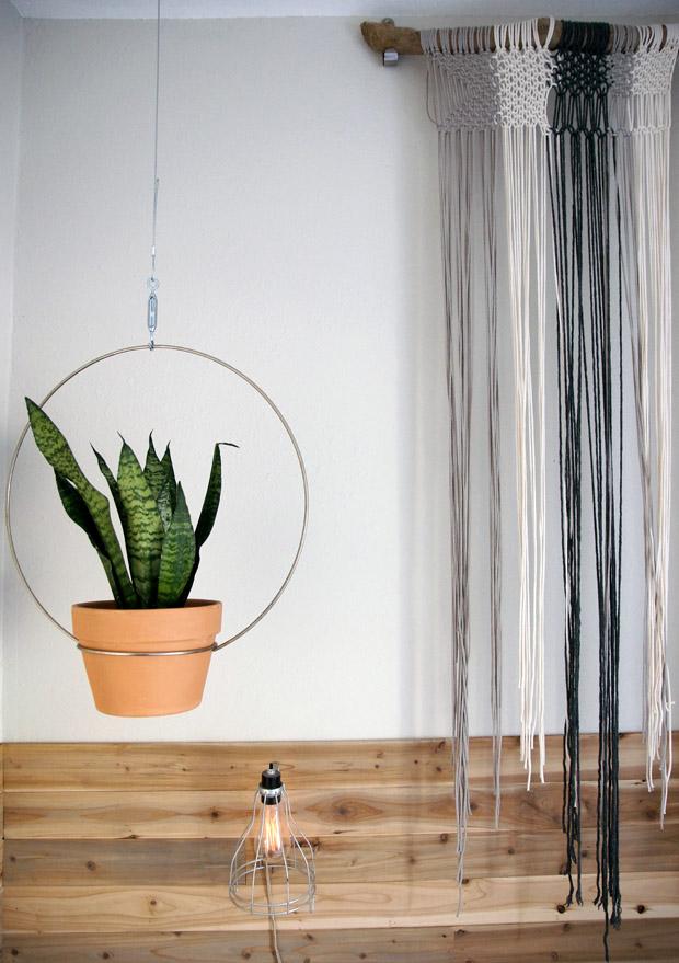 Liz-Kamarul-bed plant