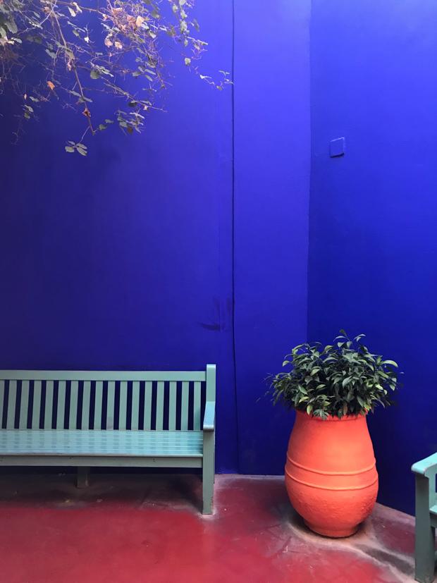 Travelogue Le Jardin Majorelle Jungalow By Justina Blakeney